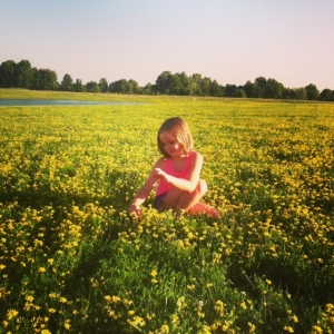 fieldofgold